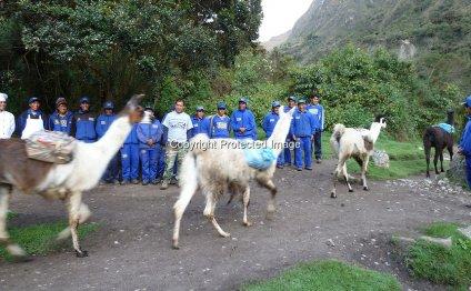 Porters, SAS Travel Peru