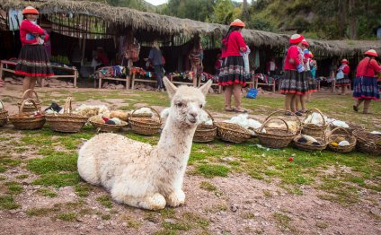 Peru people and culture