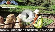 Tour to Cuzco with Llamas and Alpacas 1 day exploring the
